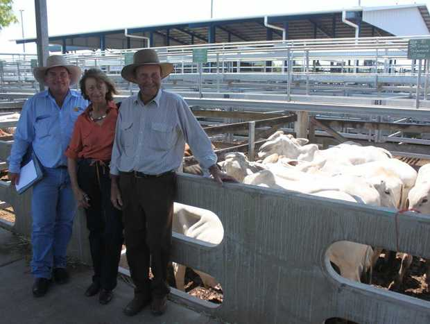 Auctioneer Brian Dawson with Pauline and Jack Lynch from St Lawrence who sold two decks of no.1 Brahman steers and heifers at last week's (November 2) sales at CQLX Gracemere.
