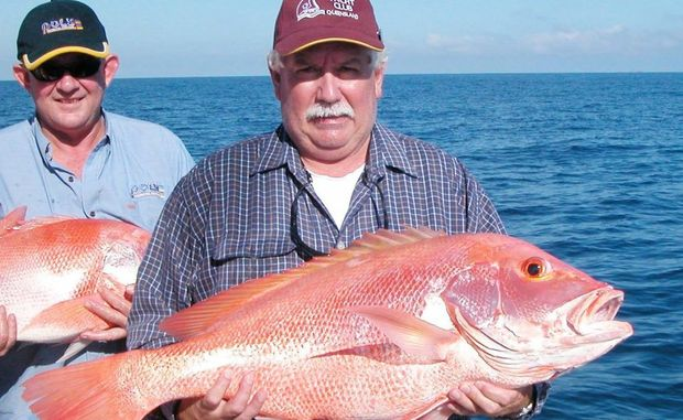 Daily Mercury journalist and keen fisherman Bruce McKean lands a beaut nannygai.