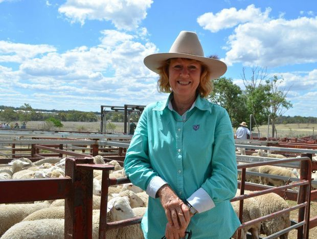 BUSINESS IN A BOX: Swan Creek's Heather Weeks has her own lamb supply business - Lamb-in-a-box.