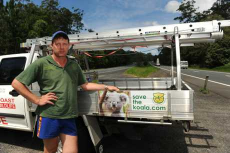 Sunshine Coast Koala Wildlife Rescue has struggled for five years and needs urgent financial help.