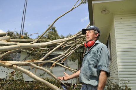 Felton farmer Don Steffens begins the clean-up after a tree fell on his home during the storm.