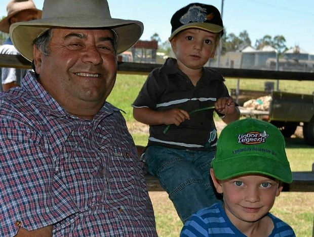 FAMILY OUTING: Stanthorpe's Armando Cattanin took his grandsons Nate McCarthy, 2, and Jarrah McCarthy, 5, to buy pigs at the Lyons St saleyards last week.