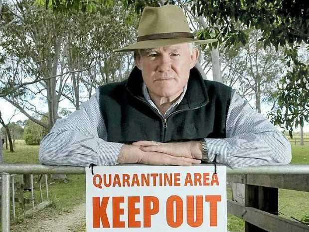 VIGILANT: Pimlico Farmer Frank Curran, who had two horses die of hendra virus.