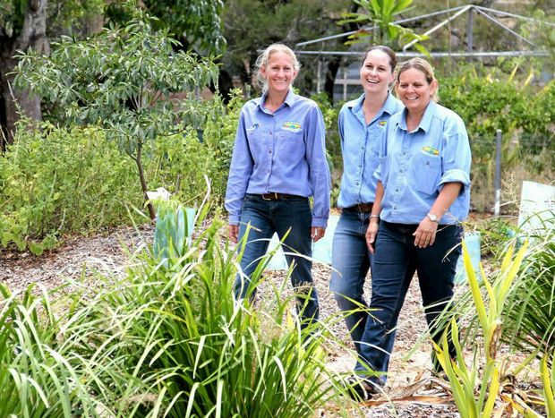 NATURE'S WAY: Sarina Landcare Catchment Management Association regional Landcare facilitator and Reef Catchments' catchment co-ordinator Saskia von Fahland, administration officer Nadine Hamill and project officer Margaret Meng work to protect to natural environment of the Sarina catchment.