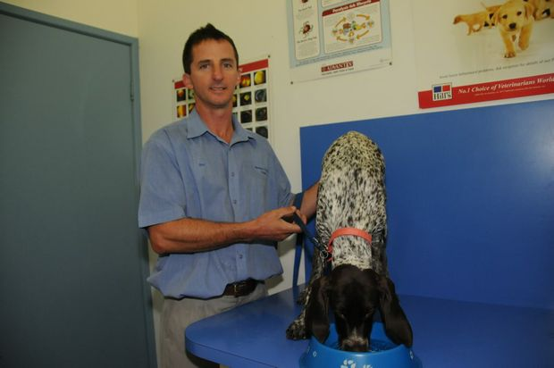 Phil Hayman at Harbour City Vet in Gladstone ensuring Milly gets enough water. Animal and livestock owners have been urged to make sure they are prepared for a predicted heatwave.
