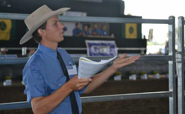 ONE MORE?: Auction assistant Anthony O'Dwyer checks for a further bid on Sunday.