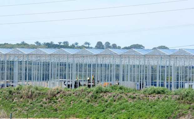 Australian Bay Lobster Producer shed. Photo: John Gass / Daily News