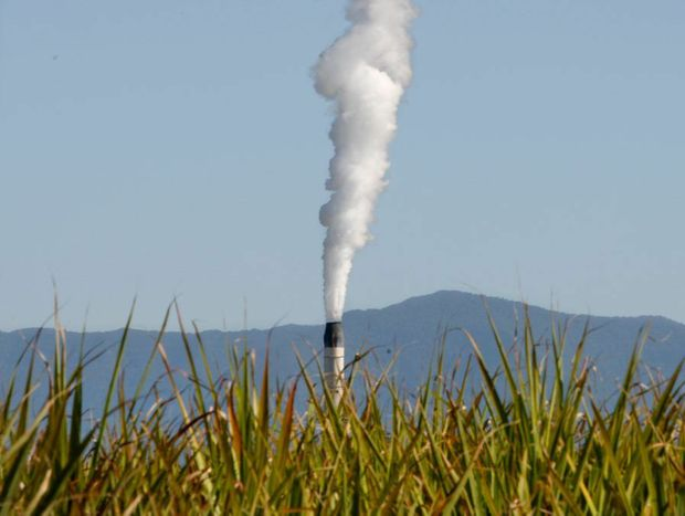 Tweed Shire impresses with its carbon footprint.