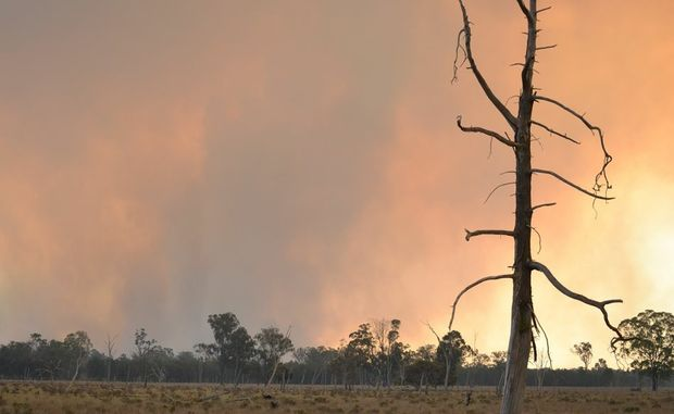 The Halliford bushfire burning out of control on Wednesday afternoon. Photo Gen Kennedy / Dalby Herald