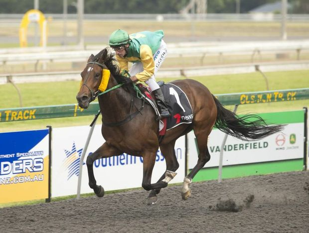 Town Dazzler (Geoff Goold) scores his second consecutive Clifford Park win for trainer Paul Nolan (Jnr) yesterday.