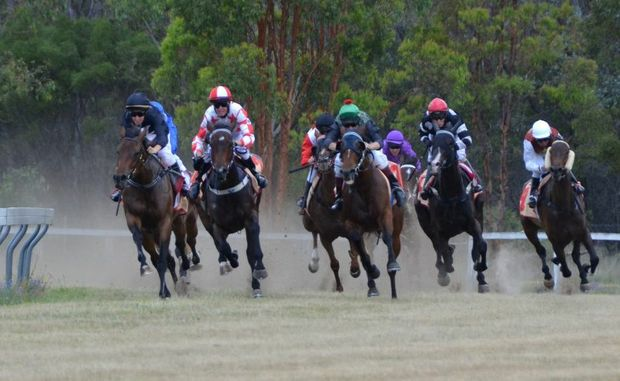 Heading home at race one at Nanango.
