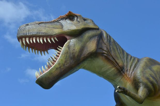 Jeff the dinosaur at Clive Palmer's Coolum resort.