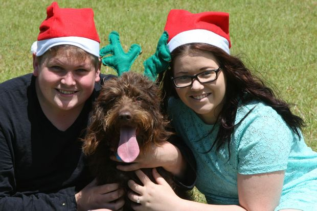 Pet tips at Christmas, Jackson Mackay and Jade Milligan of Buderim will be spending their first christmas together with Coco their Labradoodle. Photo: Kari Bourne / Sunshine Coast Daily