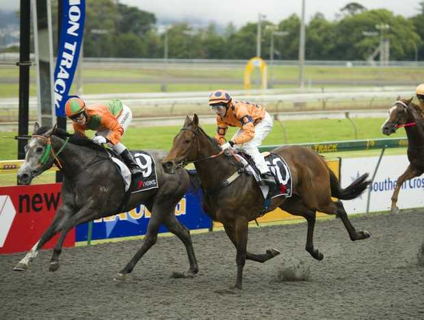 A decision on the future of Clifford Park's racing surface will be made tomorrow night.
