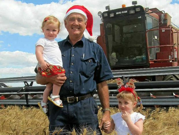 CHRISTMAS SPIRIT: Clifton grain producer Kerry Cranitch with his granddaughters Chloe and Audrey Mellor get into the spirit of Christmas, despite Mr Cranitch's disappointing wheat harvest this season.