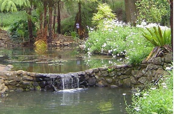 The water garden, created from the natural stream which runs through the property, is a magnificent focal point of the property.