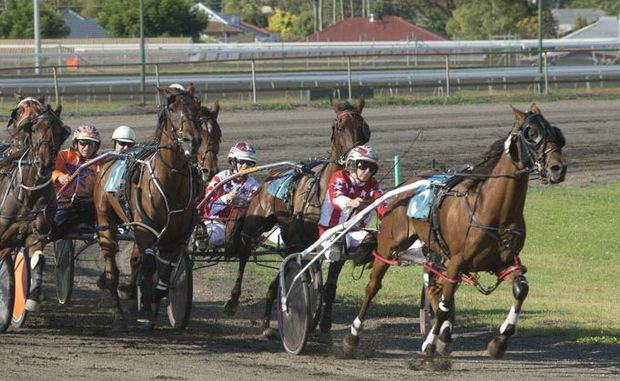 BOTRA Christmas Gift winner Highview Sign and driver Narissa McMullen lead the field for home at Clifford Park yesterday.