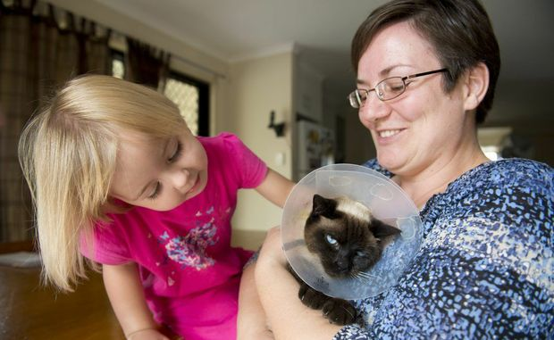 Kate Lavers with her pet cat Dusty and mum Lorraine. Dusty faced an uncertain future, but thanks to the kindness of strangers he will see out his days with the Lavers family.