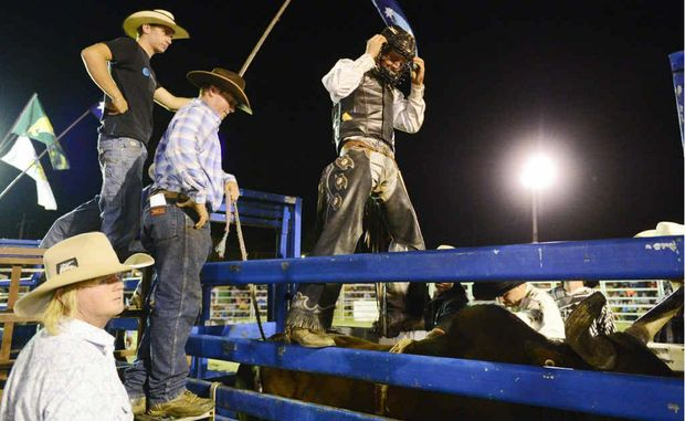 Lawrence cowboy Shane Want gets set to ride feature bull, Hot Shot, during the Jacaranda Rodeo at the Grafton Showground. Want could face Suicidal this Saturday night. Photo: Debrah Novak