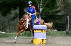 13-year-old Renee Quinn of Redbank Plains has been selected to represent Australia in barrel racing.