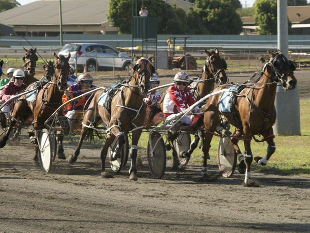 Harness racing returns to Clifford Park on Sunday.
