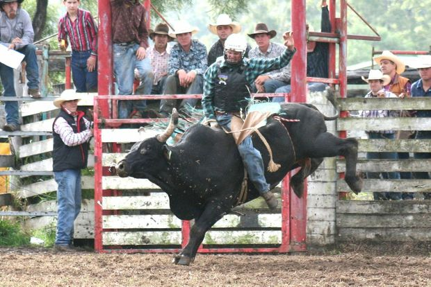 RECORD HOLDER: Fraser Babington of New Zealand holds an Australian Rodeo Record and hung on tight at a rodeo recently.