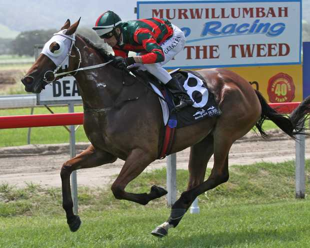 Glen Colless on board Miss Fency his first of four winners on the day. Miss Fency was prepared by Murwillumbah trainer Matt Dunn who scored a treble.