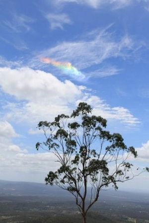 Mt Lofy resident Cyril Pulford captured the colourful clouds on the first day of 2013.