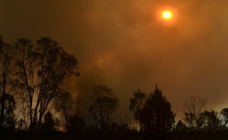 NSW Farmers have set up a fund to help farmers affected by bushfires.