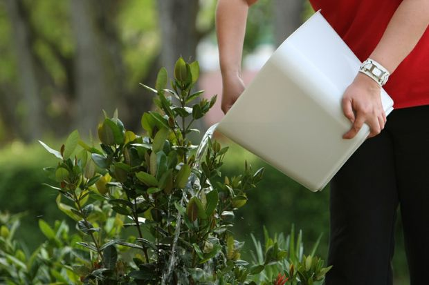 Level three water restrictions will come into effect in Tara on Friday.