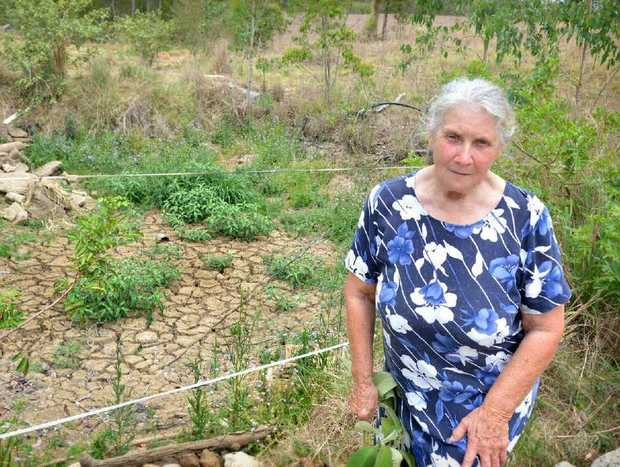 Judy Ballard believes soil toxins are responsible for the ill health of animals on her Glastonbury Rd property.