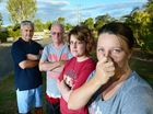 Residents kicking up a stink over foul stench