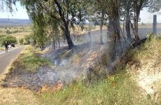 A grassfire ripped across an Iredale property in the Lockyer Valley this afternoon.
