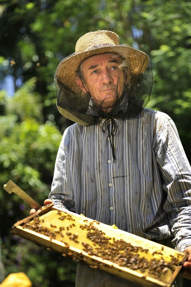 David Dubens, bee keeper, from Wilson Creek, holding a frame with bees and honey. Photo Mireille Merlet-Shaw / The Northern Star