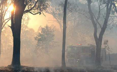 GRASS BLAZE: Firefighters attend a grass fire at Leichhardt.