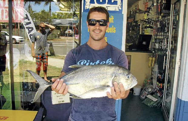 GOOD CATCH: Troy Mattson shows of this 55cm giant trevally caught on a live herring underneath the Bli Bli bridge.