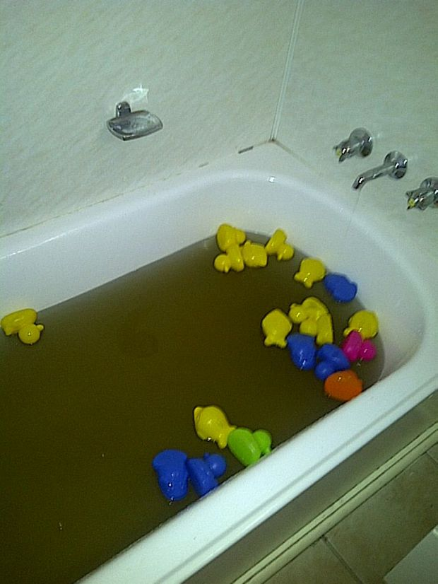 Dirty water in child's bath in a home at Dysart.