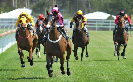 SPOTLIGHT: Silent Actress smashes the field in the Ray White Ipswich Maiden P