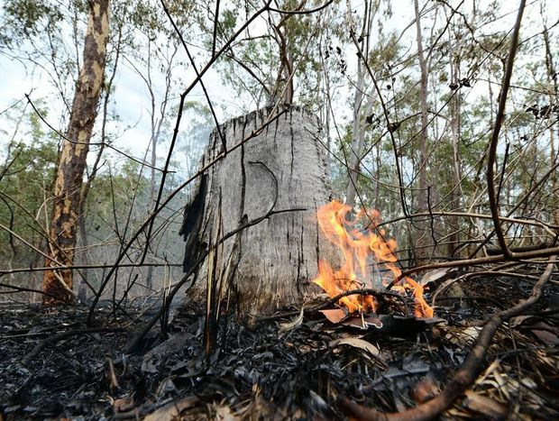 The Queensland Country Women's Association has donated $20,000 towards the disaster appeal being conducted by the Northern Gulf Resource Management Group.
