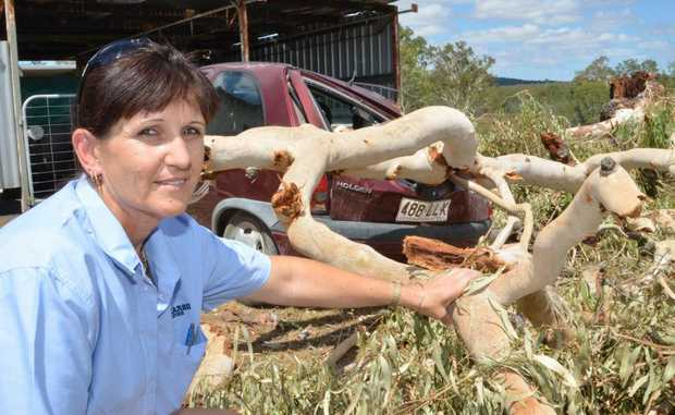 CLOSE CALL: Tracey Thompson outside her Nanango home where a 9m tree fell on her car during a storm.
