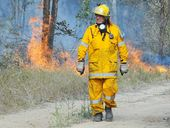 OUR yellow army wants Queensland's politicians to vote with their conscience on firefighter cancer compensation coverage.