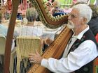Harpist in line for Australia Day Citizen of the Year honour