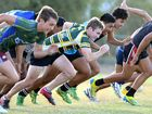 Success breeds hard life for Ipswich rugby league juniors