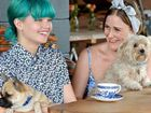 No more ruff treatment - cafes to decide on allowing dogs