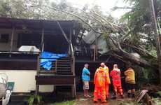A tree fell on this Nunderi home at 4am on Monday.