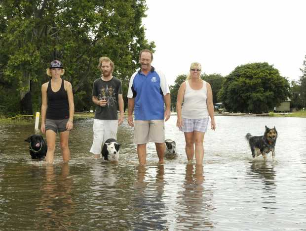 Grantham family (from left) Katherine, Michael, Garry and Linda Godley wade through floodwater on the Gatton-Helidon Road yesterday.