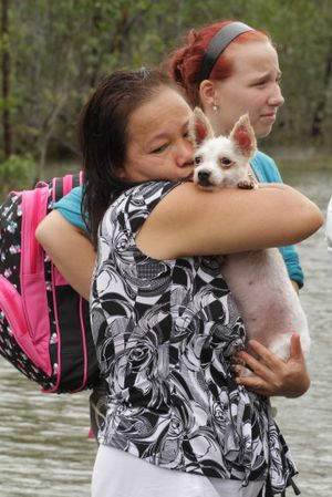 Tinh Lawton with her dog Kitty was emotional after being ferried across the Bruce Highway in a boat after her home in Aldershot was flooded. Photo: Robyne Cuerel / Fraser Coast Chronicle