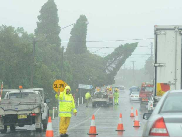 FELLED: Emergency workers deal with a falling tree along the Bruxner Hwy in Goonellabah yesterday.