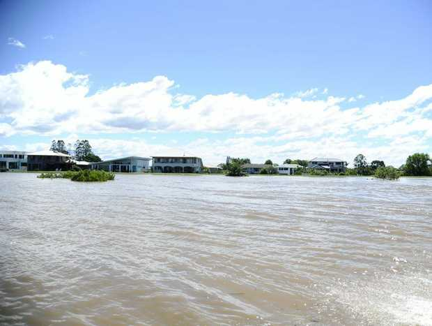 Houses along the riverbank of the Clarence River in Grafton. Photo: JoJo Newby / The Daily Examiner