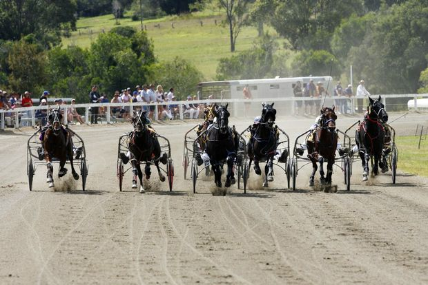 Action from race 2 at the Marburg Racing Association Festival of Harness at Marburg Showgrounds on Easter Sunday, 2012.